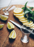 Cocktail set Stock Photography