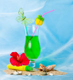 Cocktail with shells and red flower Royalty Free Stock Image