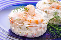 Cocktail of shrimp in jelly Stock Photos