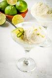 Cocktail sich hin- und herbewegender Margarita Lizenzfreies Stockbild