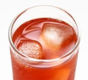 Cocktail sur la glace Photographie stock libre de droits