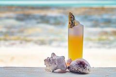 Cocktail sur une plage Images libres de droits