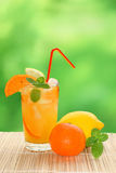 Cocktail with tangerine and lemon juice Stock Photo