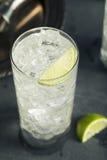 Cocktail tonique de Highball de vodka alcoolique photo stock