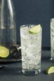 Cocktail tonique de Highball de vodka alcoolique photo libre de droits