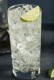 Cocktail tonique de Highball de vodka alcoolique photos stock