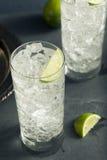 Cocktail tonique de Highball de vodka alcoolique photographie stock libre de droits