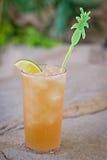 Cocktail tropical alcoólico de refrescamento, chá gelado de Long Island Imagem de Stock Royalty Free