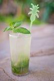 Cocktail tropical alcoólico de refrescamento Mojito Imagens de Stock