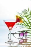 Cocktail tropical colorido em um vidro de martini decorado pela fatia Imagens de Stock Royalty Free