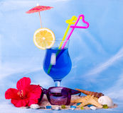 Cocktail with tropical shell and glasses Royalty Free Stock Photos