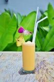 Cocktail in tuin royalty-vrije stock fotografie