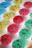 Cocktail Umbrella Pattern. Cocktail umbrellas of different colors arranged in a pattern Royalty Free Stock Photo