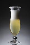 Cocktail variopinto su una pendenza fotografia stock
