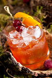 Cocktail velho da forma Fotos de Stock