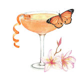 Cocktail watercolor illustration. Hand drawn watercolor illustration of summer fresh cocktail with butterfly and floral decoration. Isolated on the white Vector Illustration