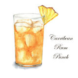 Cocktail watercolor illustration. Hand drawn watercolor illustration of summer fresh cocktail Carribean Rum Punch. Isolated on the white background Vector Illustration