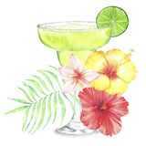 Cocktail watercolor illustration. Hand drawn watercolor illustration of summer fresh cocktail with floral decoration and lime. Isolated on the white background Stock Illustration