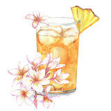 Cocktail watercolor illustration. Hand drawn watercolor illustration of summer fresh cocktail with pineapple and floral decoration. Isolated on the white Royalty Free Illustration