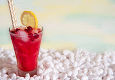 Cocktail with watermelon. A refreshing summer drink. Stock Images