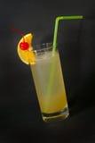 Cocktaile Ginfizz Imágenes de archivo libres de regalías