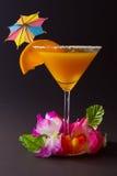 Cocktailklasse Royalty-vrije Stock Foto