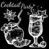 Cocktailpartyvektorillustration Grafiska isolerade mat- och drinkbeståndsdelar för linjär stil tropisk mood Perfekt menymall royaltyfri illustrationer