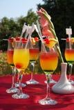 Cocktails auf der roten Tabelle im Garten Lizenzfreie Stockfotografie