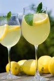 Cocktails avec des parts de citron Photo stock