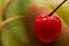 Cocktails avec le fruit frais Images stock