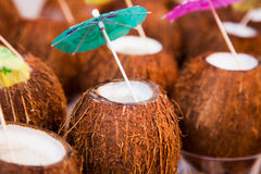 Cocktails in coconuts Stock Images