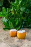Cocktails in coconuts on sand. Y tropical beach Royalty Free Stock Photos