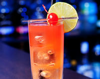 Cocktails Collection - Cranberry Cooler royalty free stock photos