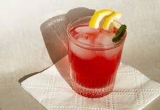 Cocktails d'été Images stock