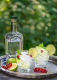Cocktails de genièvre avec le concombre dans le jardin photo libre de droits