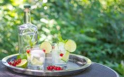 Cocktails de genièvre avec le concombre dans le jardin photos stock