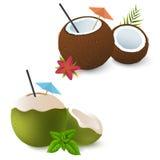 Cocktails de noix de coco avec le parapluie, la fleur rouge et les feuilles vertes de la menthe Brown et vert Attribut exotique d Photographie stock