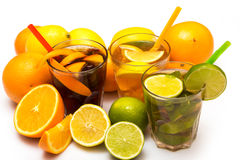 Cocktails with different citrus fruits Stock Image