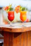 Cocktails exotiques Image libre de droits