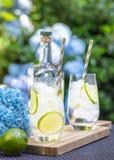 Cocktails frais de genièvre avec la chaux dans un jardin photos stock