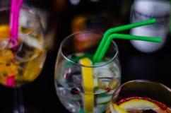 Cocktails frais et régénérateurs basés sur le genièvre, une herba distinctive images libres de droits