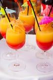 Cocktails. A fresh cocktails on a bar Stock Photos