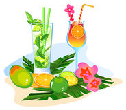 Cocktails and Fruits Stock Image