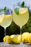 Cocktails with lemon slices Stock Photo