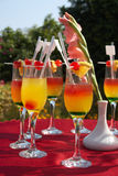 Cocktails on the red table in the garden Royalty Free Stock Photography