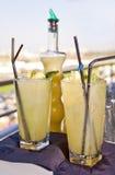 Cocktails am Rennen-Tag Lizenzfreies Stockfoto
