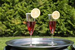 Cocktails on tray in garden Royalty Free Stock Image