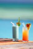 Cocktails tropicaux image libre de droits