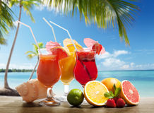 Cocktaisl and tropical fruit Stock Image
