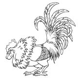 Cocky rooster lack contour on white. Cocky rooster black contour line on white background. Fiery cock, chicken a symbol of the Chinese new year 2017. Vector Stock Image